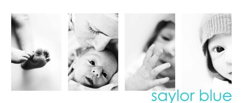 saylor_collage