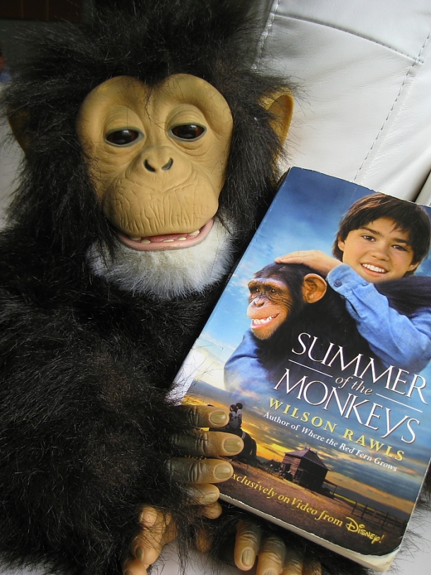summer of monkeys